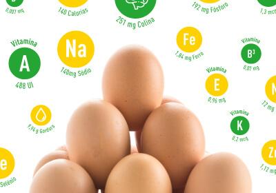nutrientes do ovo